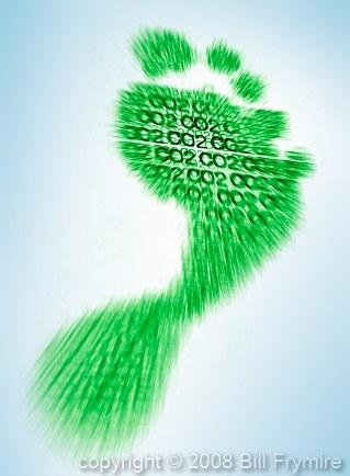 green-carbon-footprint-434