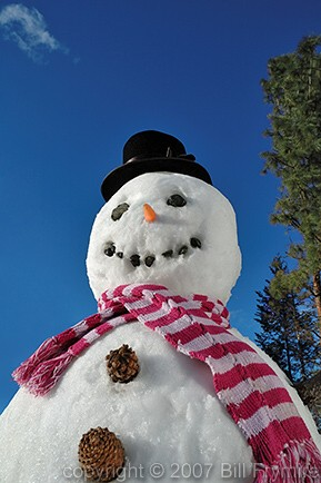 Winter real snowman