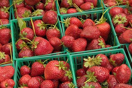 organic-strawberries-basket-fruit.jpg