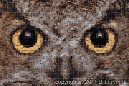 owl-eyes-mosaic-434.jpg