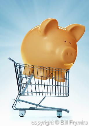 frugal-piggy-bank-big-savings-shop-434.jpg