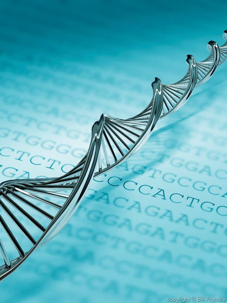 Junk dna role research paper