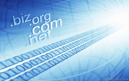 different types of internet names for business