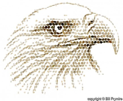 digital render of eagle mosaic made out of agate stones