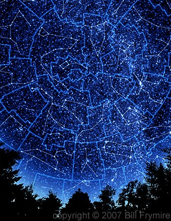 Star constellations in the night sky with silhouette of trees below.