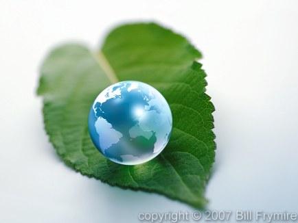 Earth Marble on Green Leaf