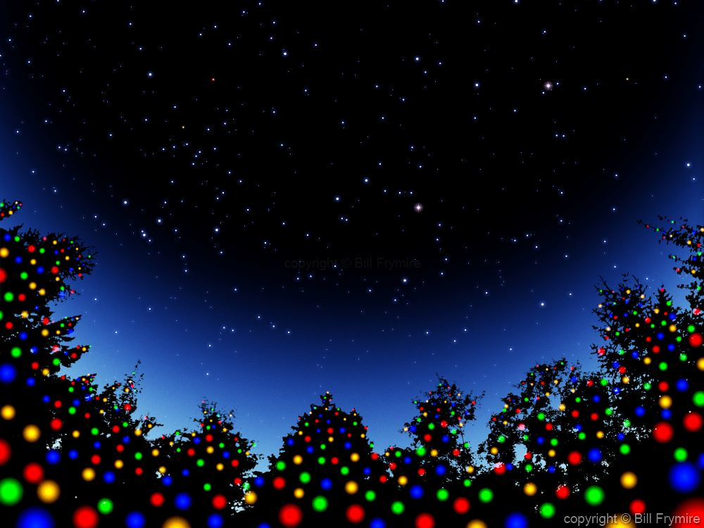christmas trees in starry sky - Starry Christmas