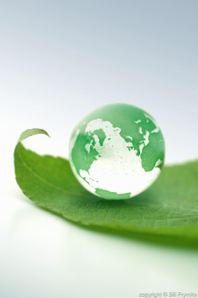 Marble Globe On Green Leaf